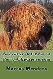 Secretos del Briard: Perro-Obediente.com