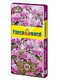 Floragard Bio Rhodohum ohne Torf 40 L • Spezialerde •  für Rohododendron, Azaleen, Blaubeeren und andere Moorbeetpflanzen  • mit Bio-Dünger • torffrei