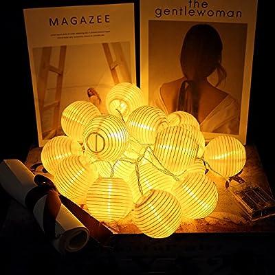 CozyHome LED Lampion Lichterkette - 5,5 Meter Gesamtlänge | 15 LEDs warm-weiß - kein lästiges austauschen der Batterien | NICHT batterie-betrieben sondern mit Netzstecker