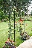Garden Mile Grand 2.4M Noir Métal Jardin Arche résistant solide tubulaire Tonnelle pour roses plantes grimpantes soutien…