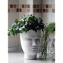 Precioso piedra de cara como Jardinera, flores Tarro de piedra, resistente a las heladas.