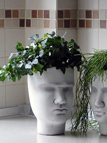 Wunderschöner Stein Kopf Gesicht als Pflanzgefäß, Blumengefäß aus Steinguss, frostfest
