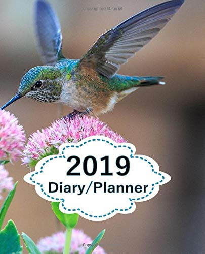 2019 Diary Planner: Page a Day (365 Pages) Daily Diary / Planner, Calendar Schedule Organizer for Daily, Weekly & Monthly Goals Blue Humming Bird Pink Flowers Cover