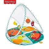 Fisher-Price Gimnasio Océano plegable, manta de juego para bebés recién nacidos (Mattel FXC15)