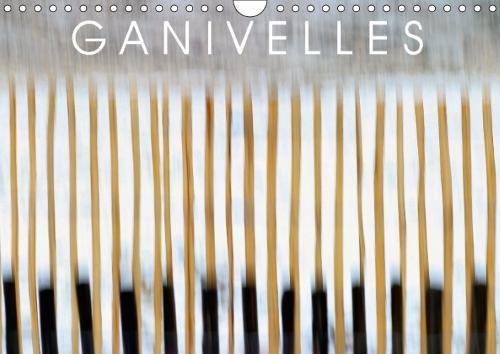 GANIVELLES (Calendrier mural 2018 DIN A4 horizontal): Barrières en lattes de châtaignier, les ganivelles servent à fixer sur les dunes le sable ... ... [Kalender] [Apr 01, 2017] LOÏC, Jacques