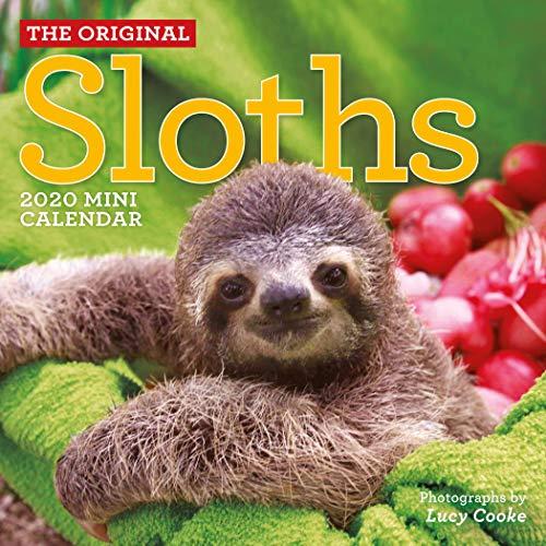 Original Sloths Mini Wall Calendar 2020