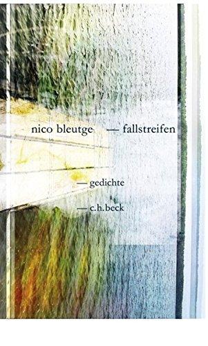 Fallstreifen: Gedichte