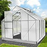BRAST Gewächshaus Aluminium mit rostfreiem Stahlfundament 9,6 m³ 250x250x205cm 2 Fenster Treibhaus Glashaus Alu Gartenhaus