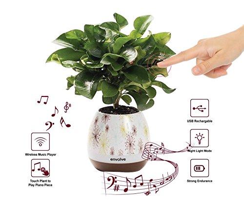 Musik Blumentopf,/LED Smart Touch Musik Blumentopf mit kabelloser Bluetooth-Lautsprecher, multicolor Nachtlicht, Play Piano Musik auf einem echten Pflanzen mit farbigen LED-Lichter (Pflanze nicht inklusive)