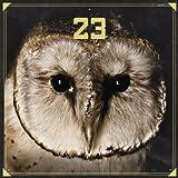 23: 23 (Audio CD)
