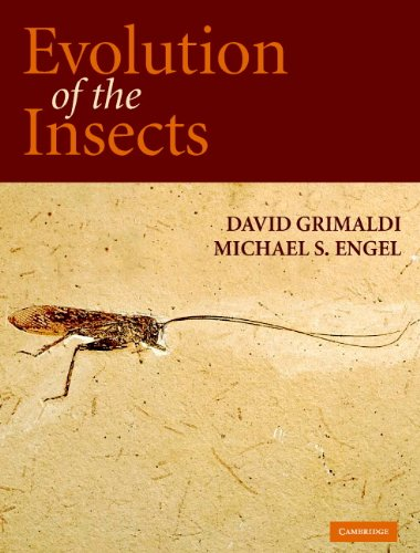 Evolution of the Insects (Cambridge Evolution Series) (English Edition)