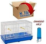 Motisi Zootecnici Gabbia COVA Uccelli, CANARINI, PAPPAGALLI, Verniciata CM. 55x32x37 con GRIGLIA E DIVISORIO + Omaggio 2 beverini, Fondo Gabbia in Colori Assortiti