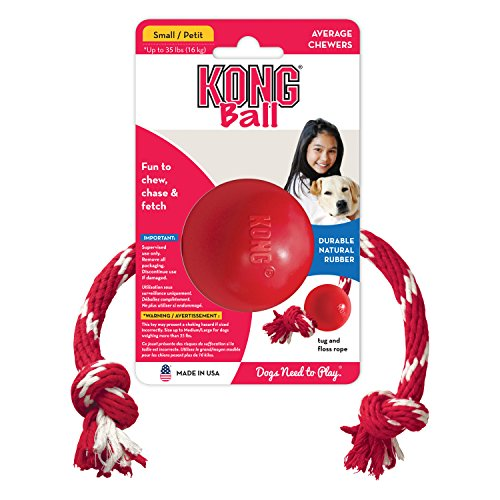 katzeninfo24.de Kong BALL WITH ROPE SMALL