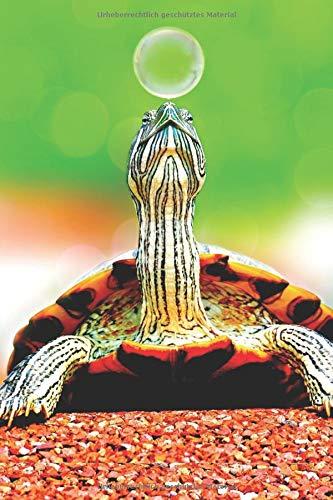 te: blanko Malbuch Schildkröte Notizbuch ohne Zeilen / Linien a5 mit 120 Seiten ()