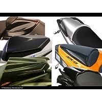 Kawasaki zx6-r 05–06/zx10-r 06–07/carbonio look-silver mesh–Coprisella