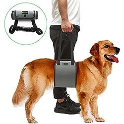 RockPet Harnais de Soutien pour Chiens avec poignée pour l'Aide Canine, Harnais de soulèvement pour Chiens approuvé par Les vétérinaires pour la réhabilitation (L,Gris)