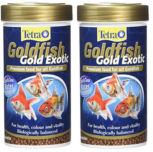 Tetra Goldfish Gold