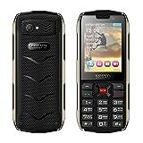 Mobiltelefon 2,8 Zoll 4 SIM-Karte 4 Standby Staubdicht Erdbeben Wasserdicht Bluetooth Taschenlampe GPRS 3000mAh Netzteil , black (english edition)