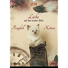 Liebe auf den ersten Blick . Ragdoll Kitten (Wandkalender 2018 DIN A3 hoch): Ragdolls erfreuen sich dank ihres zauberhaften Wesens und ihrer Schönheit ... (Monatskalender, 14 Seiten ) (CALVENDO Tiere)
