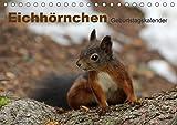 Eichhörnchen/Geburtstagskalender (Tischkalender 2017 DIN A5 quer): Zuckersüsse Eichhörnchen (Geburtstagskalender, 14 Seiten ) (CALVENDO Tiere)