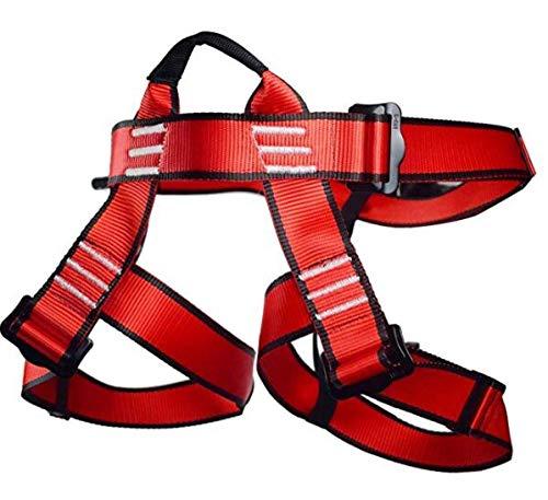 Newdoar – Arnés de escalada, cinturones de seguridad para mujer y hombre, para escalada de rock, escalada y rocío