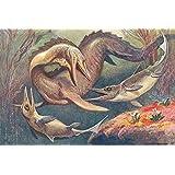 Dinosaurios - Mosasaurio Y Ictiosaurios, Heinrich Harder, 1912 Póster Impresión Artística (180 x 120cm)