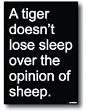 Nourish A Tiger Doesn't Loose Sleep