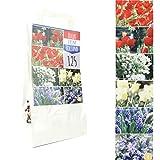 BULBS FROM HOLLAND - 125 Blumenzwiebeln in Geschenkverpackung - mehrjährig, 6 botanische Sorten gemischt für idyllisches und buntes Beet im Garten - PREMIUM