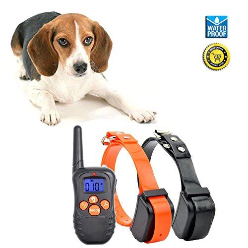 - Ausbildung Kragen Remote-hund