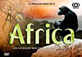 Pack Africa [DVD]