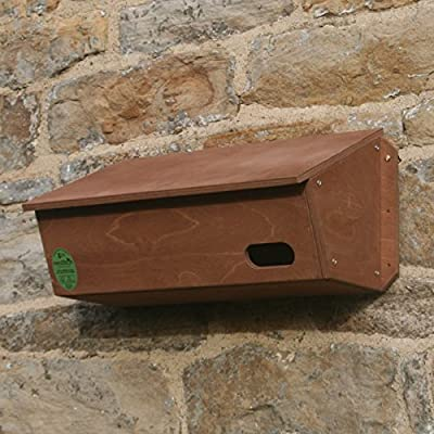 Swift Nest Box by Nestbox Co