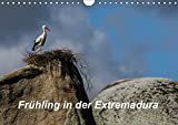 Frühling in der Extremadura (Wandkalender 2019 DIN A4 quer): Frühlingsträume in unberührter Natur, einzigartige Tier- und Pflanzenwelt im Herzen Spaniens. (Monatskalender, 14 Seiten ) (CALVENDO Orte) - CALVENDO