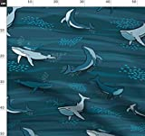 Wal, Fisch, Ozean, Unterwasser, Blau, Maritim, Seifenblasen