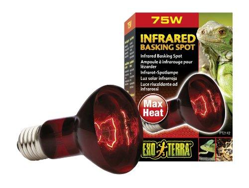 Exo Terra Infrared Basking Spot Infrarot-Spotlampe 75W
