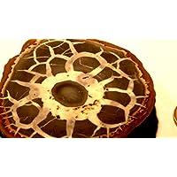 Meine schönsten Septarien, 260,55 g schwer, mit wunderschöner Zeichnung, Farben und Strukturen. Made by Nature. preisvergleich bei billige-tabletten.eu