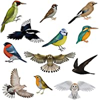 12 Brilliant Bird Window Clings by Articlings - 11 Different Birds & 1 Owl