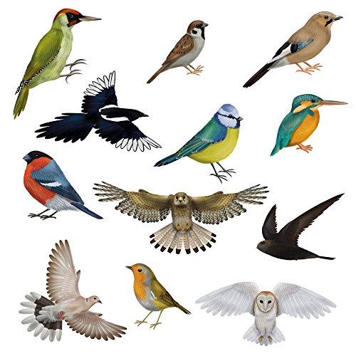 12 Wunderschöne Vogel-Fensterbilder von Articlings. 11 Verschiedene Vögel & 1 Eule. Statisch Haftende Sticker Ohne Klebstoff