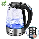 Electric Kettle Temperature Control, Yoleo 1.7L Blue Illumination LED Water Kettle Cordless, 2000W Fast Boil Tea Filter Kettle, Strix Control -BPA Free, Glass Silver