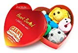 Giant Microbes Heart Burned Gift Box di mini Microbes