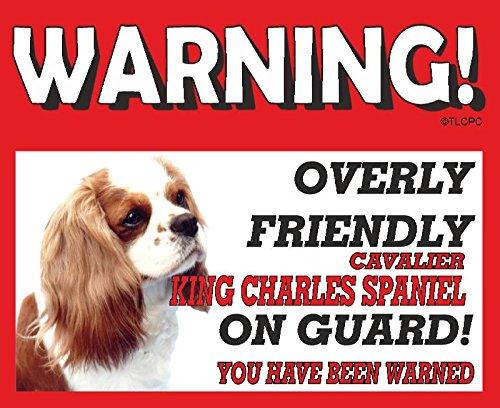 Cavalier King Charles Spaniel (Live e bianco cane da guardia Targa in metallo 10FL OZ lavastoviglie prova 59
