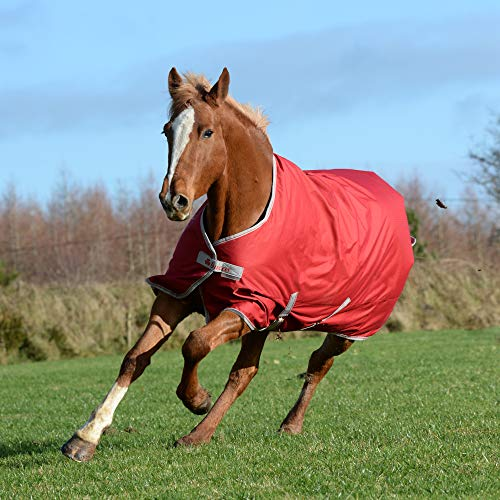 Bucas Freedom Turnout Light Chilli Red 135 cm
