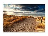 Alu-Dibond Bild Weg zum Sandstrand ans Meer in Sylt ALB00671 Butlerfinish® 150 x 100 cm, Wandbild Edel gebürstete Aluminium-Verbundplatte, Metall effekt Eyecatcher!