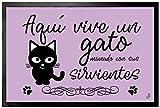 1art1® Gatos - Aquí Vive Un Gato Mimado con Sus Sirvientes Felpudo Alfombra (60 x 40cm)