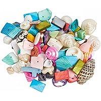 15 Muschel Anhänger Mix bunt ca 25mm Perlen Beads WO07