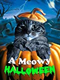 Best Family Halloween Movies - A Meowy Halloween Review
