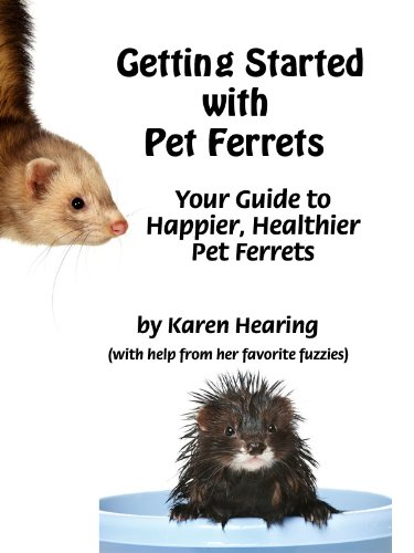 Getting Started with Pet Ferrets