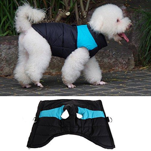 sunhoyu Hundejacke Winterjacken Hundemantel Baumwolle Chihuahua Haustier Hund wasserdicht Mantel Jacke (M, Blue)