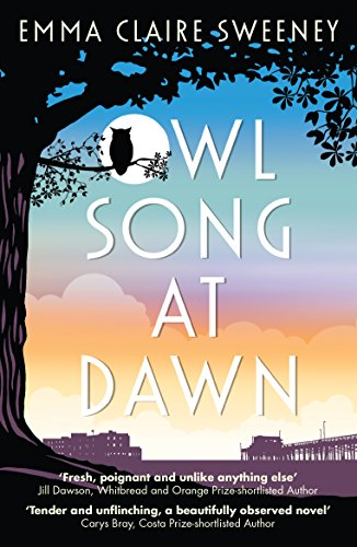 Owl song at dawn ebook emma claire sweeney amazon kindle owl song at dawn by sweeney emma claire fandeluxe PDF