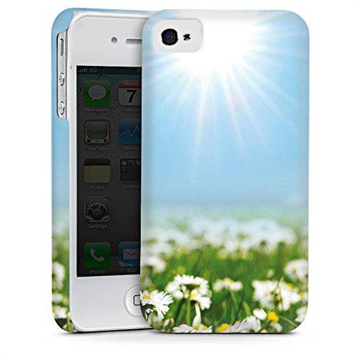 Apple iPhone 5s Housse Étui Protection Coque Prairie de fleurs Pâquerette Fleurs Cas Premium mat