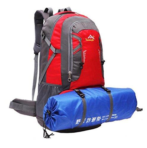 60L Outdoor Sport Rucksack Neu Bergsteigen Tasche Wandern Tasche Red